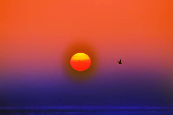 Sunrise Art Print featuring the photograph Tequila Sunrise by Bill Cannon