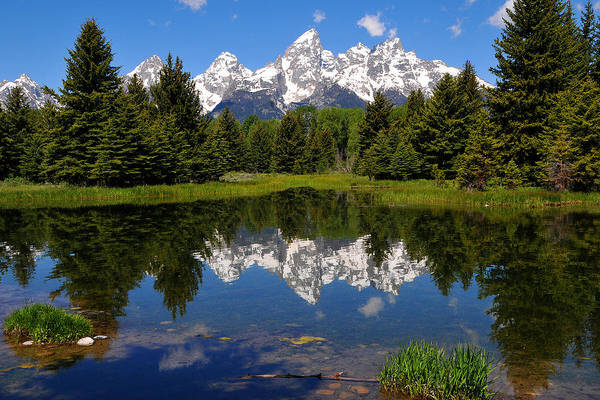 Grand Teton National Park Art Print featuring the photograph Teton Reflection by Alan Lenk