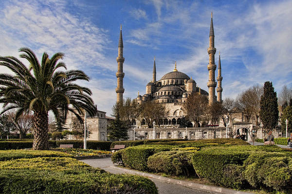 Turkey Art Print featuring the photograph The Blue Mosque In Istanbul Turkey by David Smith