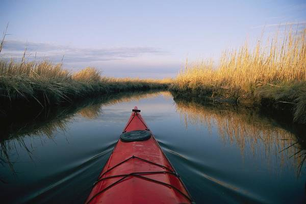 North America Print featuring the photograph The Bow Of A Kayak Points The Way by Skip Brown