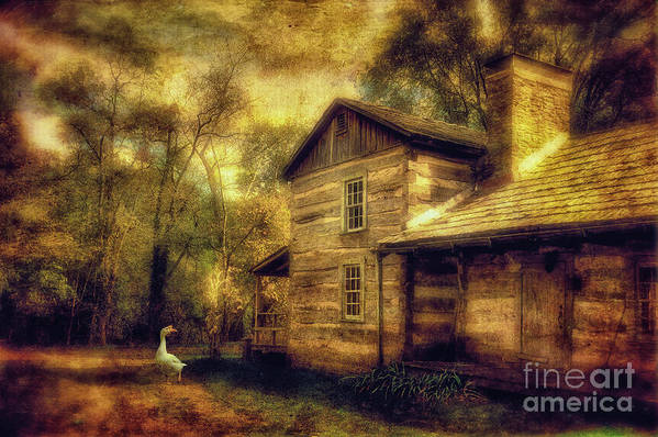 House Art Print featuring the photograph The Guardian by Lois Bryan