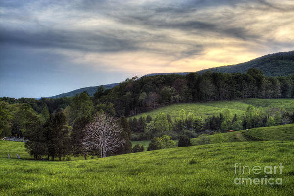 Landscape Art Print featuring the photograph The Late Bloomer by Pete Hellmann