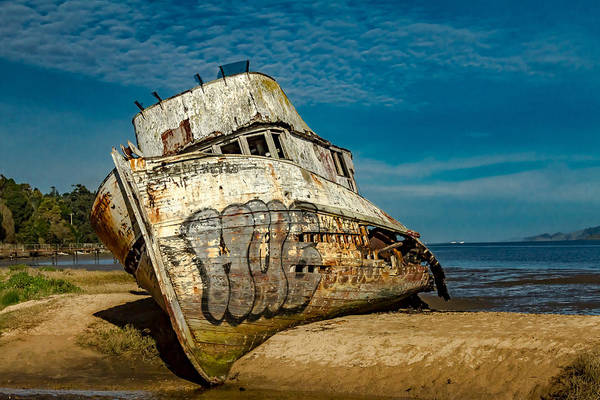 The Pt Reyes Art Print featuring the photograph The Point Reyes Beached by Bill Gallagher