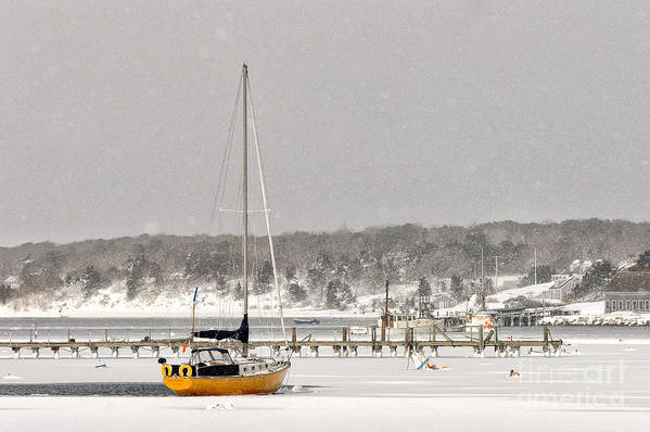Winter Art Print featuring the photograph The Sailboat Korovin Is Moored In A Mostly Frozen Stage Harbor I by Matt Suess