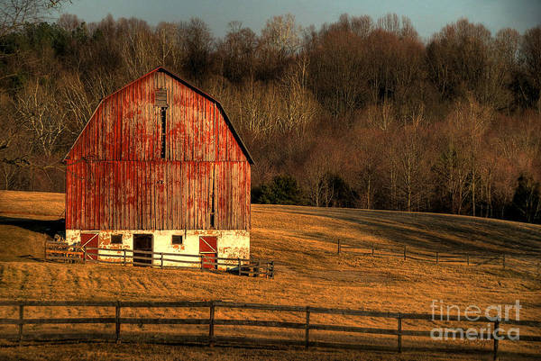 Barn Art Print featuring the photograph The Simple Life by Lois Bryan