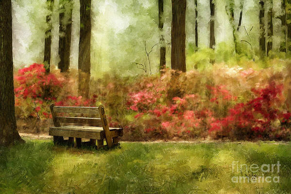Bench Art Print featuring the digital art The You You Used To Be by Lois Bryan