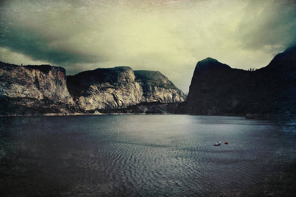 Hetch Hetchy Print featuring the photograph Through Thick Or Thin by Laurie Search