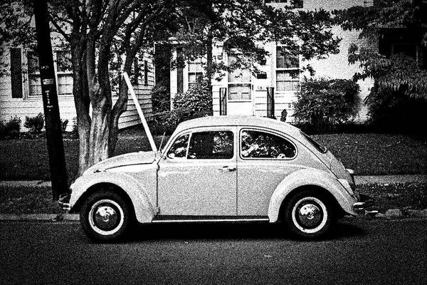 Beetle Art Print featuring the photograph Time Traveler by Nathan Barnes