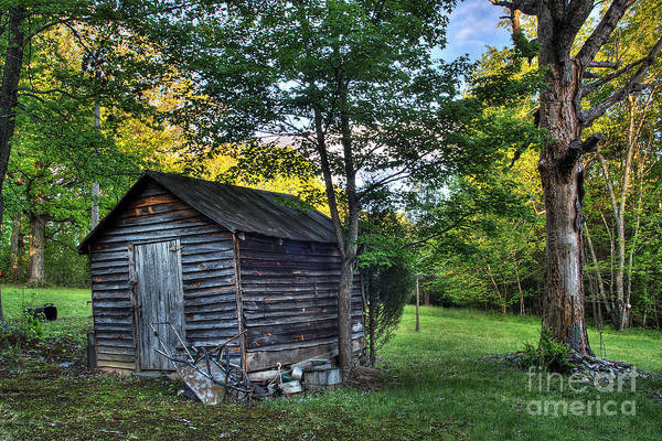 Landscape Art Print featuring the photograph Toolshed by Pete Hellmann