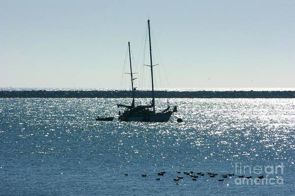 Seascape Art Print featuring the photograph Tranquil Bay by Carol Groenen