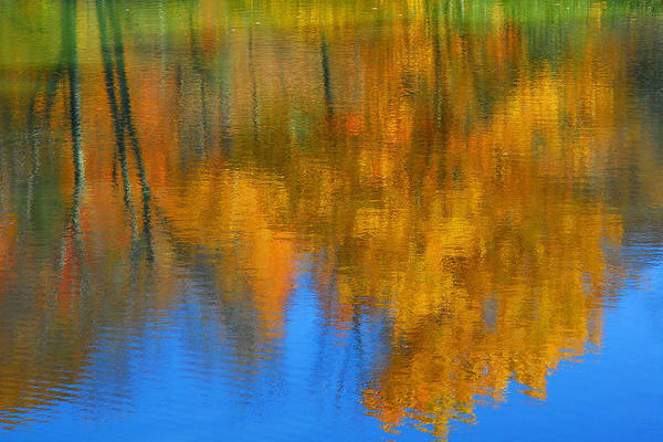 Fall Color Art Print featuring the photograph Tree Reflection 'painting' by Alan Lenk