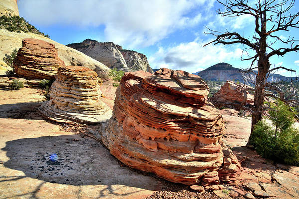 Zion National Park Art Print featuring the photograph Triple Beehives by Ray Mathis