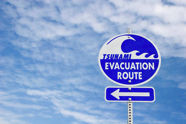Sign Art Print featuring the photograph Tsunami Evacuation Route Sign by Carol Leigh