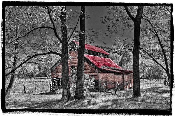 Andrews Art Print featuring the photograph Tucked In by Debra and Dave Vanderlaan
