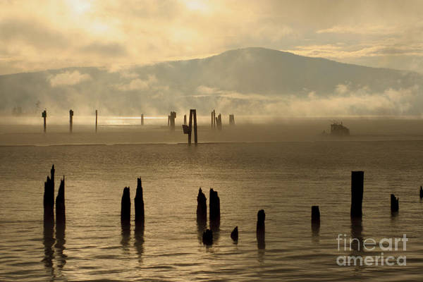 Tugboat Art Print featuring the photograph Tugboat In The Mist by Idaho Scenic Images Linda Lantzy
