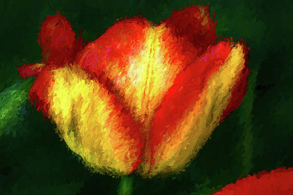 Red Art Print featuring the painting Tulip Painting by Mike Penney