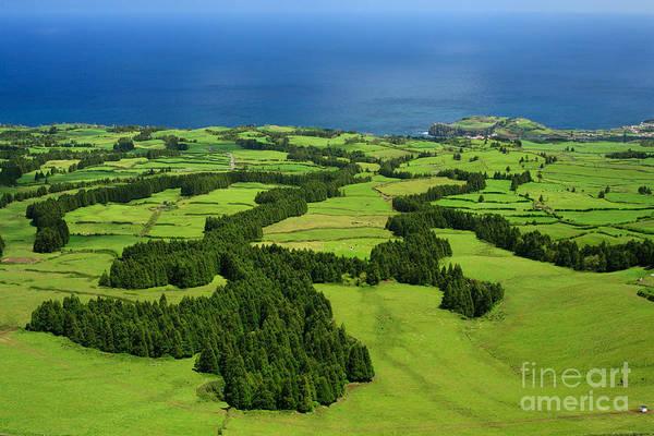 Landscape Art Print featuring the photograph Typical Azores Islands Landscape by Gaspar Avila