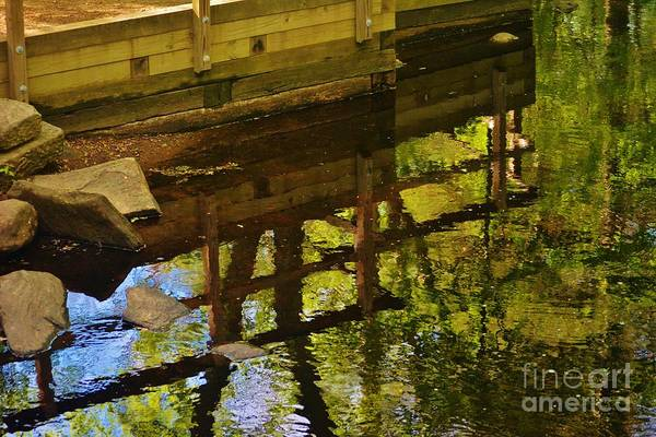 Water Reflection Art Print featuring the photograph Upside Down by Virginia Levasseur