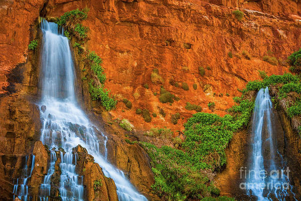 America Art Print featuring the photograph Vaseys Paradise Twin Falls by Inge Johnsson