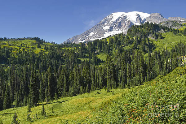 Mt. Rainier Art Print featuring the photograph View by Larry Keahey