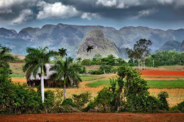 Cuba Pinar Del Rio Art Print featuring the photograph Vinales. Pinar Del Rio. Cuba by Juan Carlos Ferro Duque