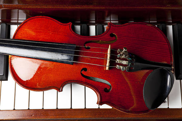 Violin Art Print featuring the photograph Viola On Piano Keys by Garry Gay