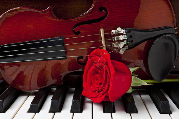 Violin Art Print featuring the photograph Violin And Rose On Piano by Garry Gay