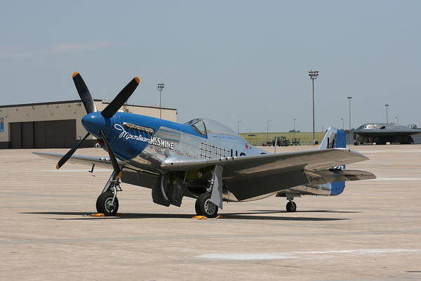Airplane Art Print featuring the photograph Wafb 09 P-51 Mustang 3 - Darling Of The Sky by David Dunham