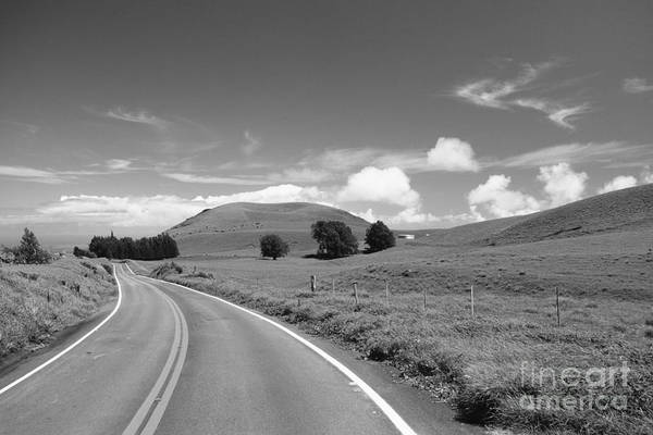 Afternoon Art Print featuring the photograph Waimea Ranchland by Bob Abraham - Printscapes