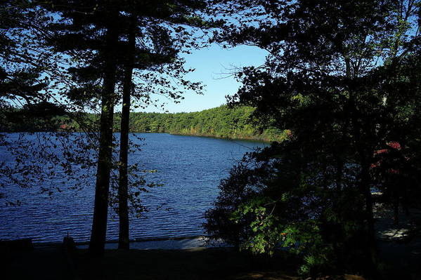Walden Art Print featuring the photograph Walden Pond End Of Summer by Lawrence Christopher