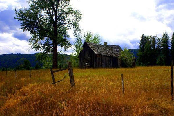 Landscape Art Print featuring the photograph Washington Homestead by Marty Koch