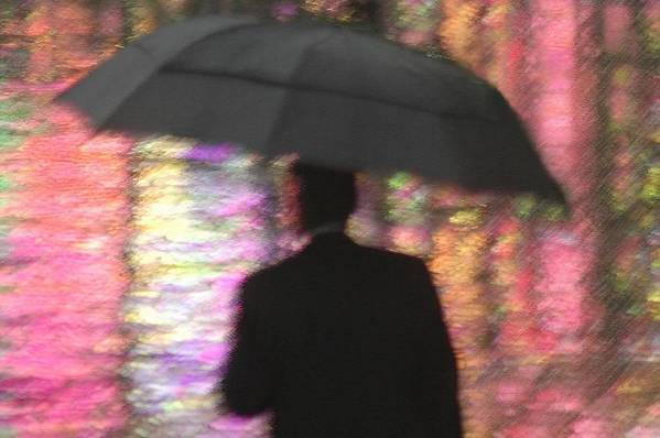 Rain Art Print featuring the photograph Water And Colors by Dan Holm