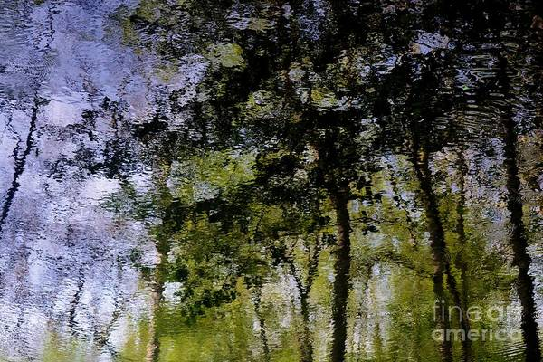 Water Reflections Art Print featuring the photograph Water Reflections 1 by Virginia Levasseur
