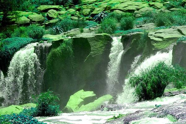 Water Art Print featuring the photograph Waterfall by Apurva Madia