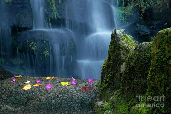 Autumn Print featuring the photograph Waterfall02 by Carlos Caetano