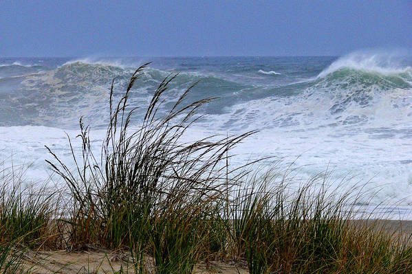 Sea Art Print featuring the photograph Wave And Sea Grass by Tom LoPresti