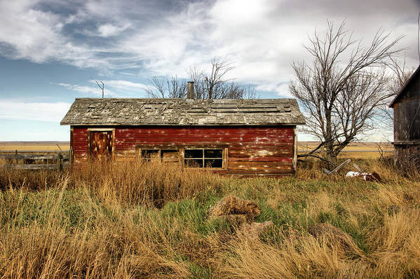 Shed Art Print featuring the photograph Weathered Red by Tingy Wende