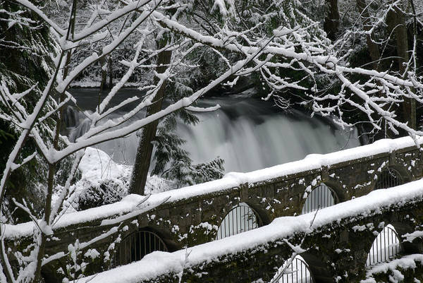 Winter Art Print featuring the photograph Whatcom Falls Winter 08 by Craig Perry-Ollila