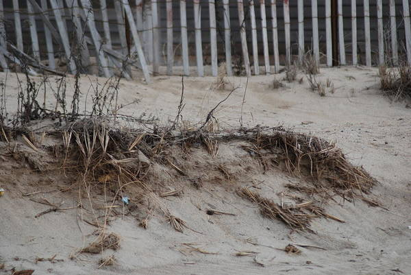 Beach Art Print featuring the photograph Whats Left by Clay Peters Photograpy