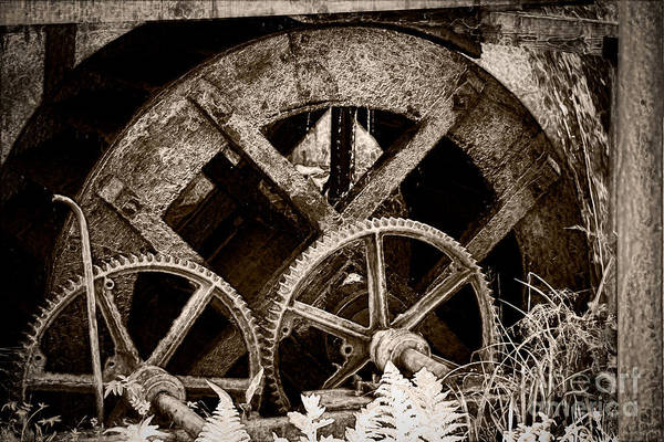 Watermill Art Print featuring the photograph Wheels Of Time by Gabriela Insuratelu
