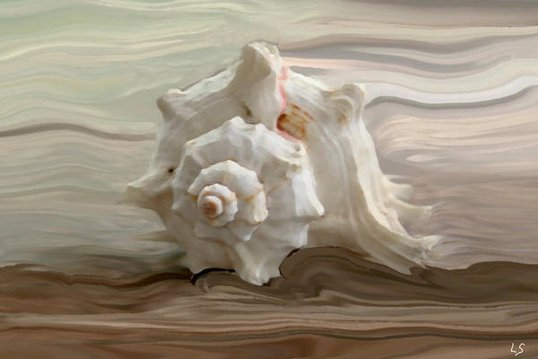 Seashell Print featuring the photograph White Shell by Linda Sannuti