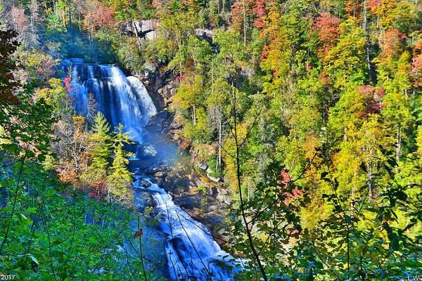 Whitewater Falls North Carolina Art Print featuring the photograph Whitewater Falls North Carolina by Lisa Wooten