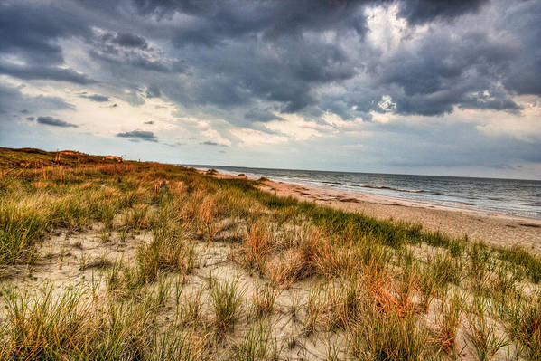 Ocean Art Print featuring the photograph Windswept by Ches Black