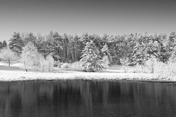 Winter Art Print featuring the photograph Winter Scene 2 by Edward Myers