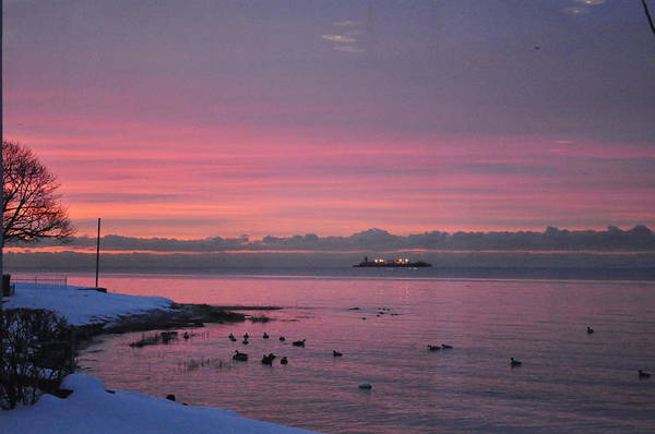 Sea Scape Art Print featuring the photograph Winter Sunrise by Joseph Cusano IV