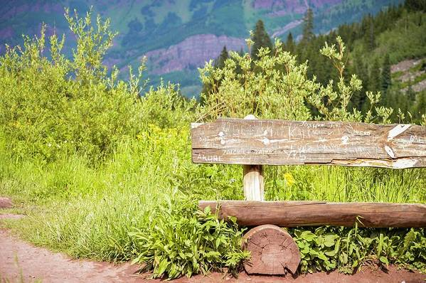 Bench Art Print featuring the photograph Wooden Bench by Livia Pavelescu