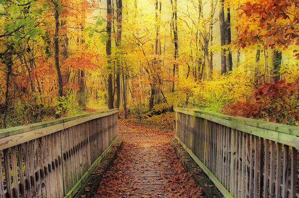 Hdr Art Print featuring the photograph Wooden Bridge  Hdr by Thomas MacPherson Jr