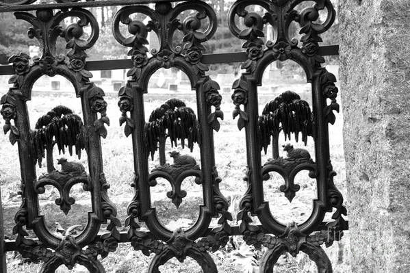 Gate Art Print featuring the photograph Wrought Iron Gate -west Epping Nh Usa by Erin Paul Donovan