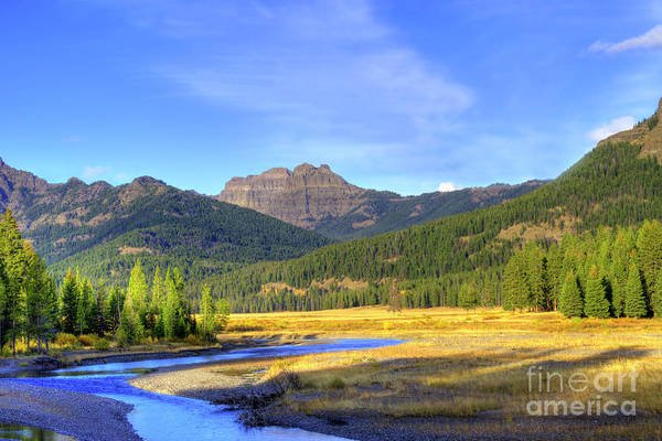 Autumn Art Print featuring the photograph Yellowstone National Park Landscape by Juli Scalzi