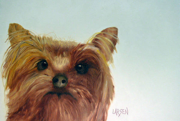 Art Print featuring the painting Yorkshire Terrier by Dick Larsen